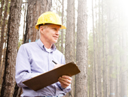 Worker in forested area