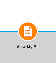 View my bill